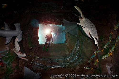 ums-aquariummuseum_7036