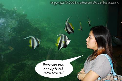 ums-aquariummuseum_7087