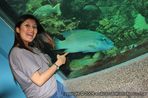 ums-aquariummuseum_7134