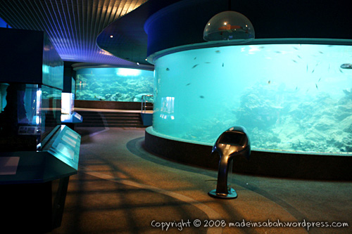 ums-aquariummuseum_7232