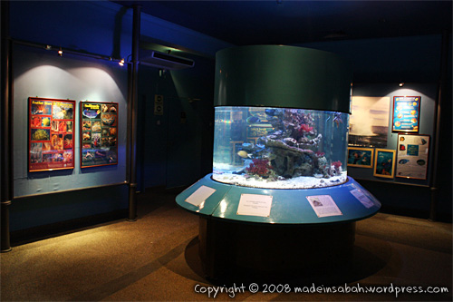 ums-aquariummuseum_7236