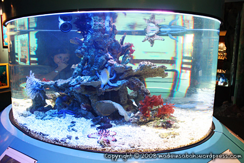 ums-aquariummuseum_7244