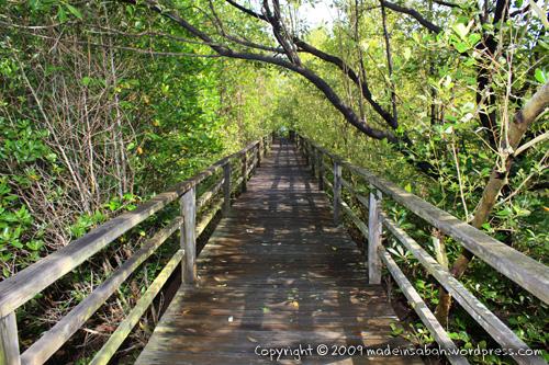 kk_wetland_centre_kotakinabalu_0546