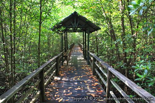 kk_wetland_centre_kotakinabalu_0572