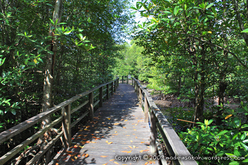 kk_wetland_centre_kotakinabalu_0592