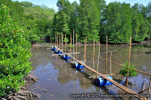 kk_wetland_centre_kotakinabalu_0637