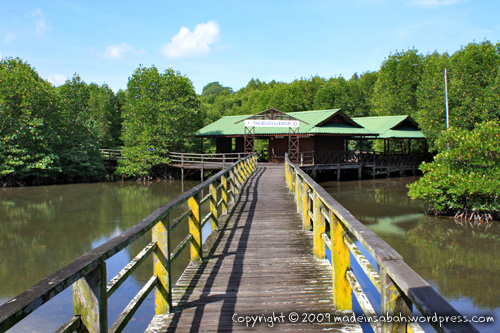 kk_wetland_centre_kotakinabalu_0655